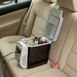 Car fridge